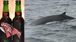 whaleBIG