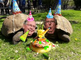 Mitch McConnell Cake Photo